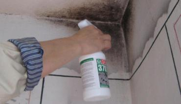 Уничтожение плесени в ванной
